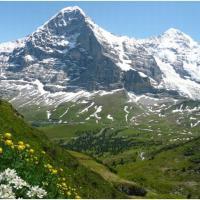 Martin Trdla a jeho švýcarské exity