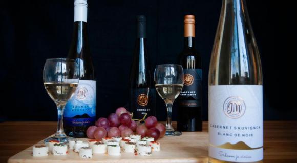 Ochutnávka vín Doľany