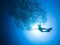 Kurz potápění
