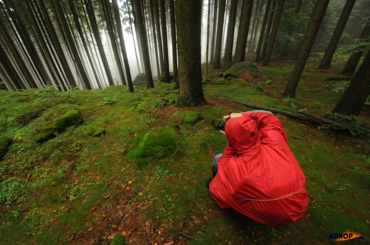 Fotovíkend v Novohradských horách - na houby s foťákem