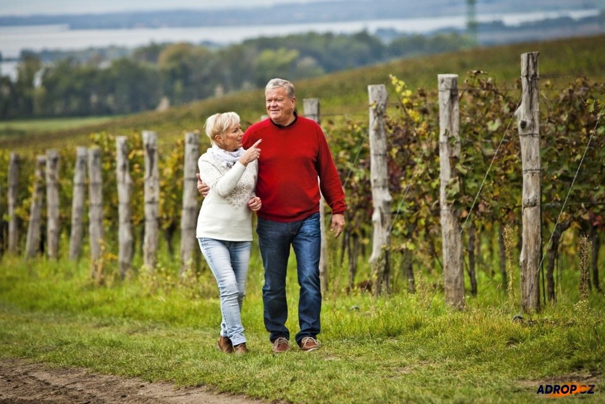Vinařské pobyty na Moravě